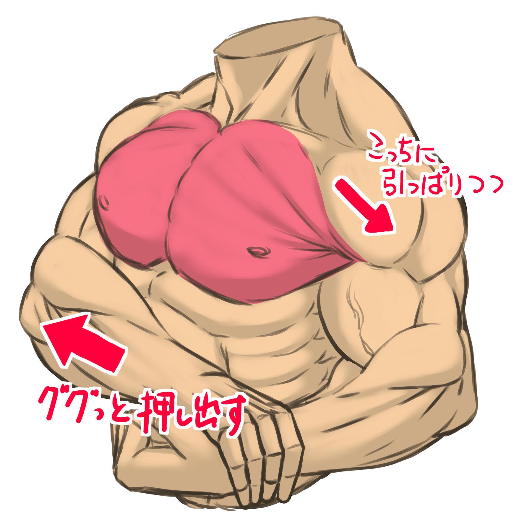 サイドチェストなど、胸を張り出すポーズ。腕に引っ張られつつ体で押し出して強調しているよう意識して描くと良いです。主に大胸筋中部の筋肉が作用する動作です。