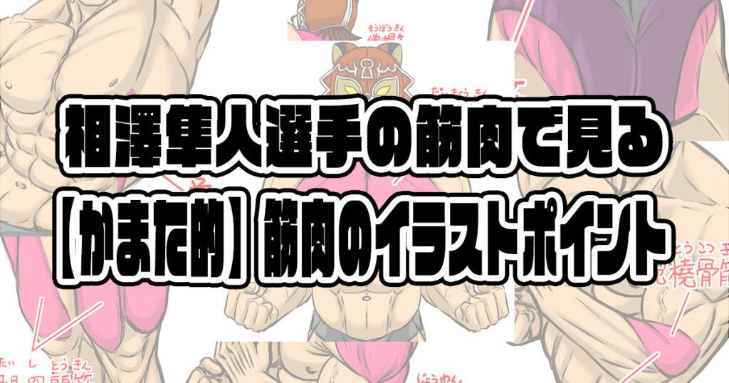 相澤隼人選手の筋肉で見る【かまた的】筋肉のイラストポイント